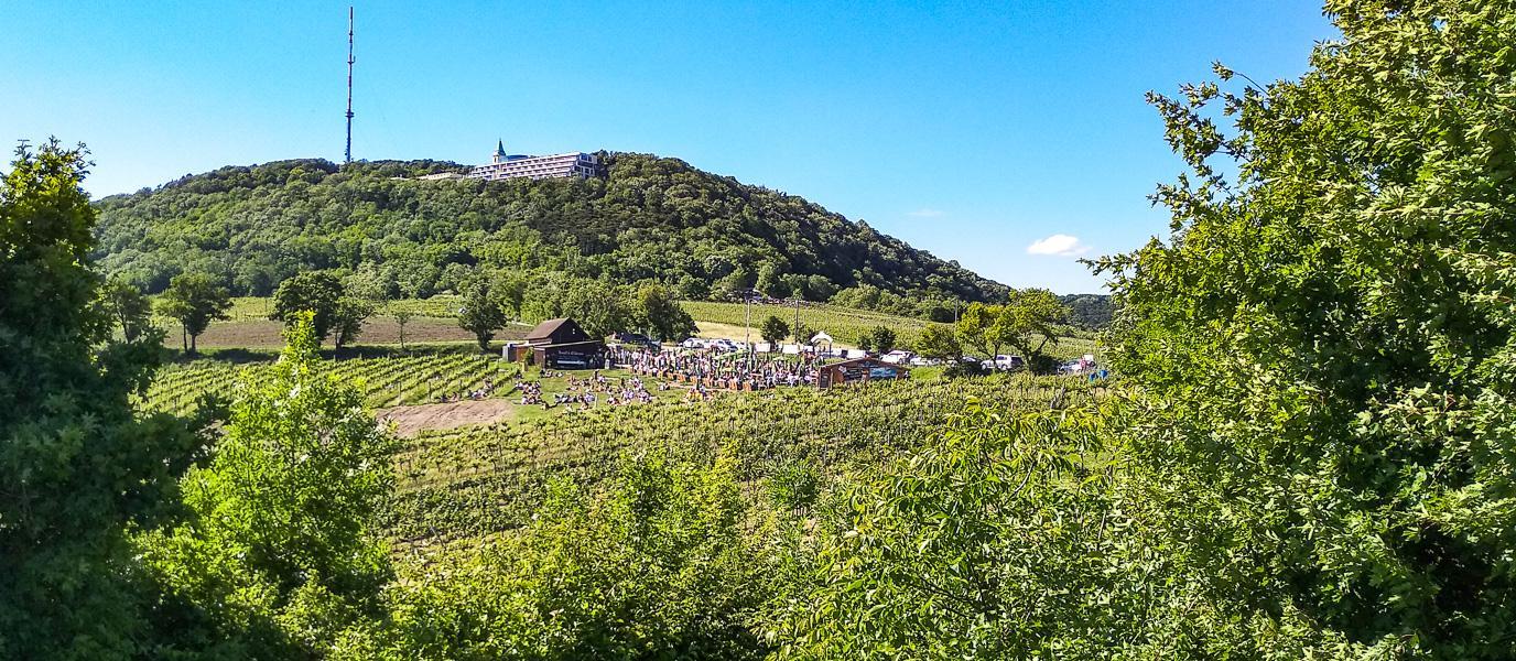 Nußberg und Sender Kahlenberg